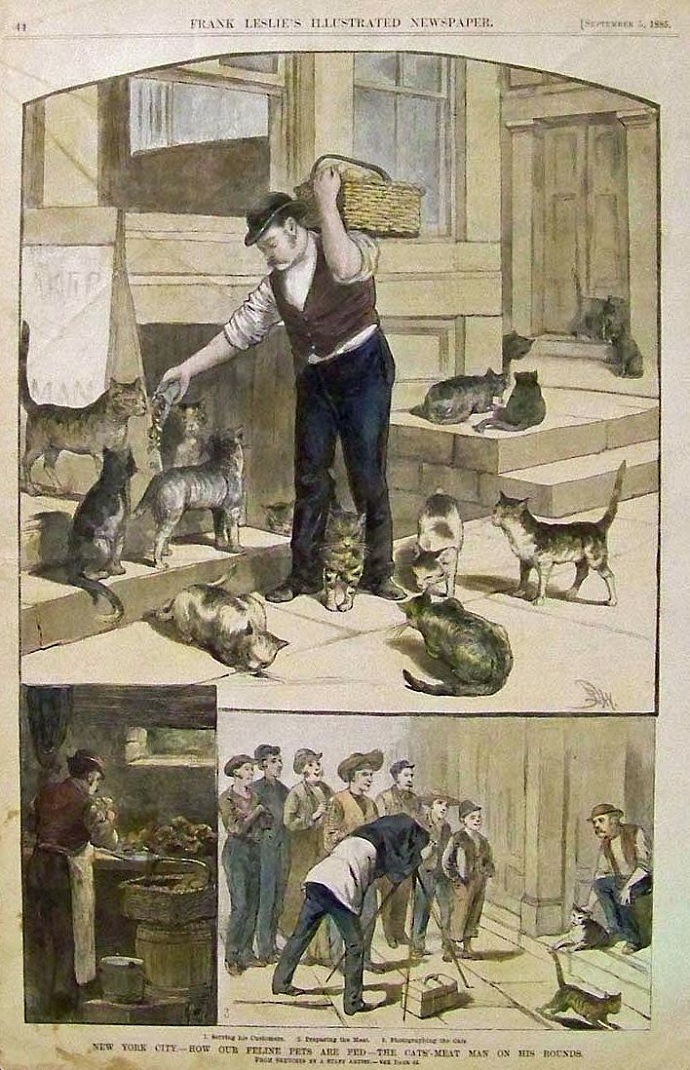 1885-ny-cats-meat-man1.jpg