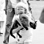 Эми Картер и ее сиамский кот