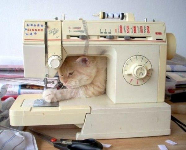 Для открыток, швейная машинка смешная картинка