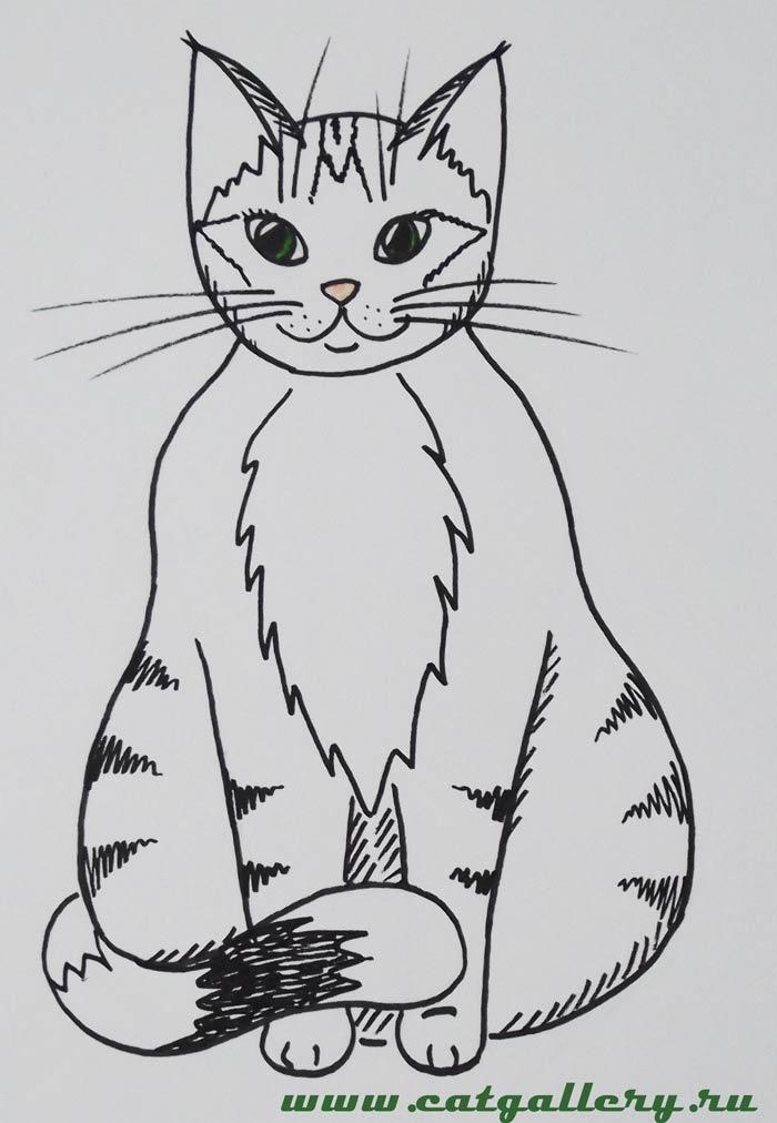 Картинки с кошками нарисованные 1 кошка стоит на 4 ногах легкие, надписью спасибо просмотр