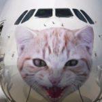 И еше о знаменитых британских котах-бродягах