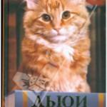 Вики Майрон, «Дьюи. Кот из библиотеки, который потряс весь мир»