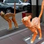 Испуганный кот, Киев