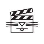 Первый фестиваль кошачьего видео