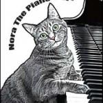 Нора, кошка-пианистка