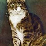 Кот по имени Класс Восемь (Room 8)