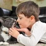 Билли, бродячий кот, который подружился с мальчиком-аутистом