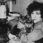 Колетт и её кошки