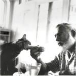 Кошки в доме-музей Эрнеста Хемингуэя в Ки-Уэст, Флорида