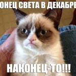 Лучшие мемы с Угрюмой кошкой (Grumpy Cat)