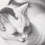 Готтфрид Минд — «кошачий Рафаэль»