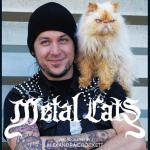 Фото-книга о котах металлистов Metal Cats