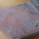 Отпечаток кошачьей лапы нашли на черепице возрастом 2000 лет