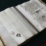 Отпечатки кошачьих лап на средневековом манускрипте