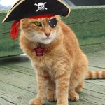 Кот Красный Эрик вышел на пенсию